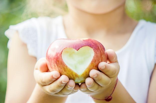 Niño con manzanas en el jardín de verano. enfoque selectivo.