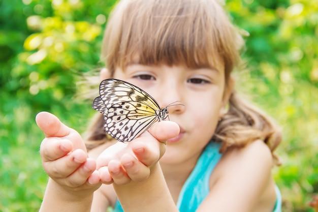 Niño con una mariposa. idea leuconoe. enfoque selectivo