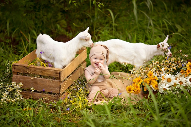 Niño niño feliz con cabras blancas en primavera en la naturaleza en el pueblo con vegetación y flores.