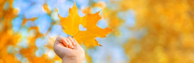Niño en el parque con hojas de otoño.