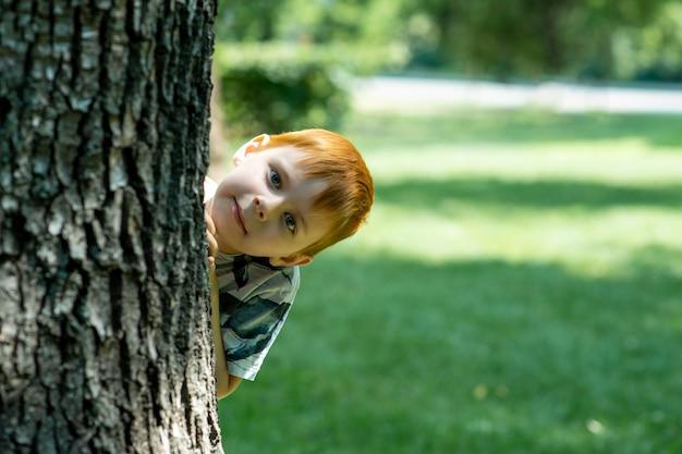 El niño pelirrojo mira desde detrás de un árbol sobre un fondo de hierba verde en verano.