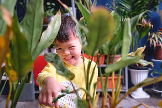 Niño pequeño asiático niño pequeño divirtiéndose cortando un pedazo de una planta en casa, introducir habilidades de tijera para niños pequeños, niño en casa,