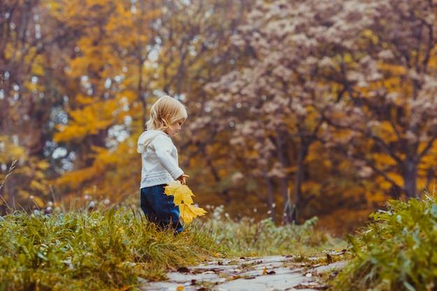 El niño pequeño con una hoja de arce camina en el parque de otoño