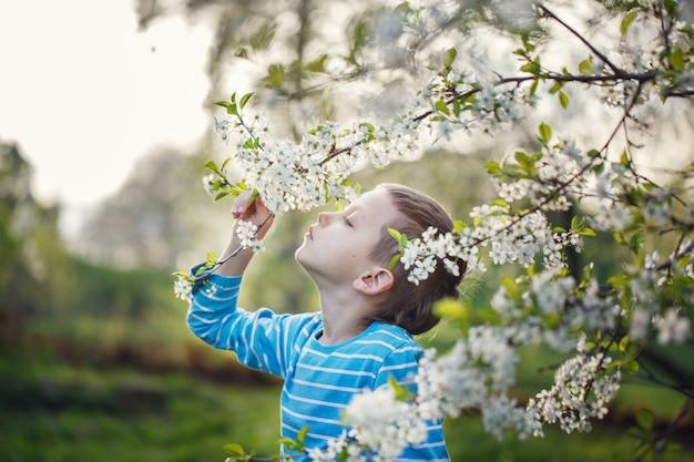El niño pequeño lindo está oliendo las flores florecientes en un parque de la primavera