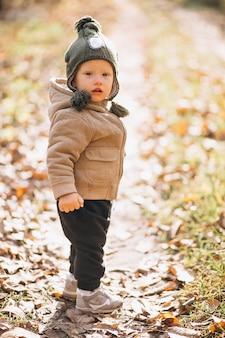 Niño pequeño lindo en un parque del otoño