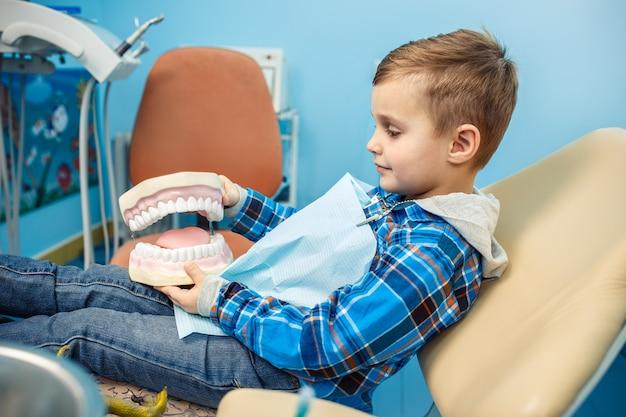 El niño pequeño toma la dentadura en sus manos. una acción está en el gabinete del dentista.