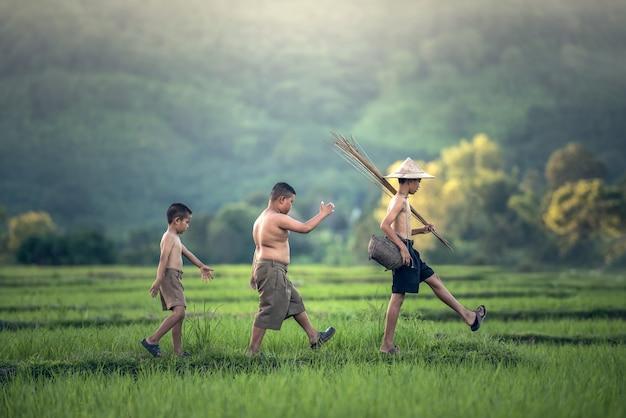 Niño de pesca en el campo de arroz