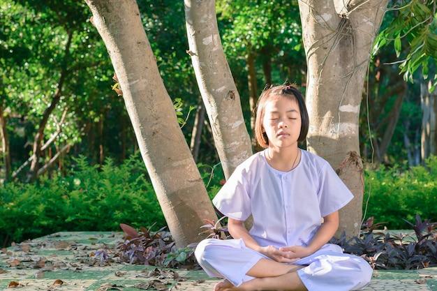 Meditar bajo los árboles