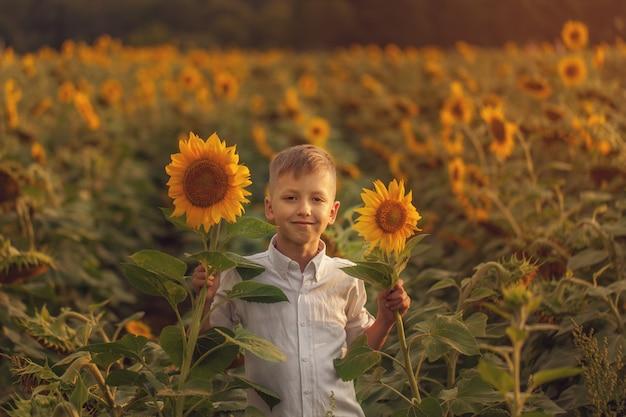 Niño sonriente del retrato con el girasol en campo del girasol del verano en puesta del sol.