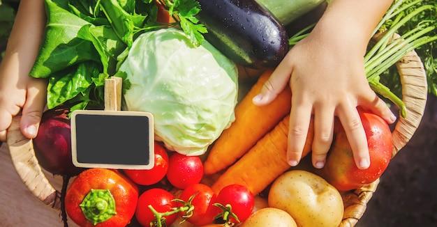 Niño y verduras en la granja. enfoque selectivo nmature