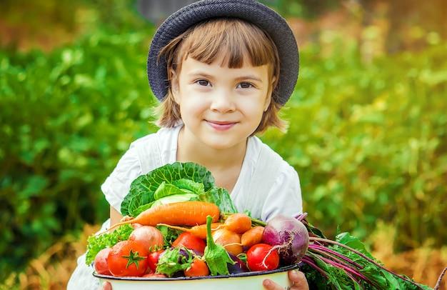 Niño y verduras en la granja. enfoque selectivo