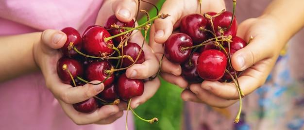 Los niños comen cerezas en el verano.