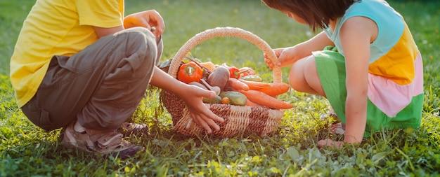 Niños hermanos y hermanas con una gran canasta llena de vegetales cultivados en su huerto ecológico.
