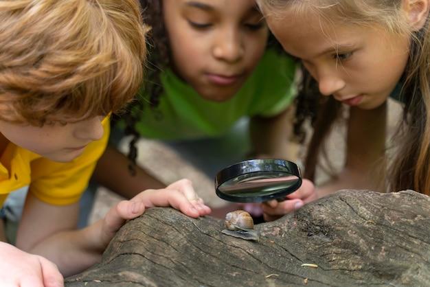 Niños mirando juntos un caracol