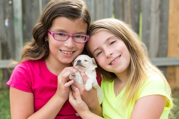 Niños niñas jugando con chihuahua mascota cachorro