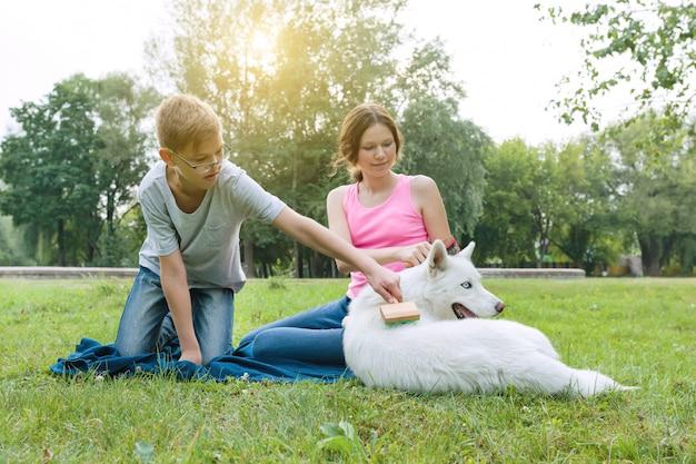 Los niños peinan a su perro con un cepillo especial