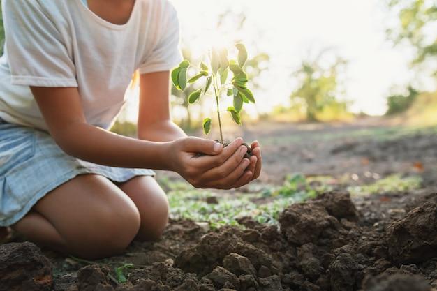 Niños plantando árboles jóvenes en el suelo en el jardín a la luz de la mañana