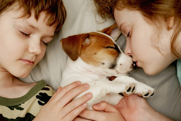 Los niños poniendo y abrazando a un cachorro jack russell terrier.