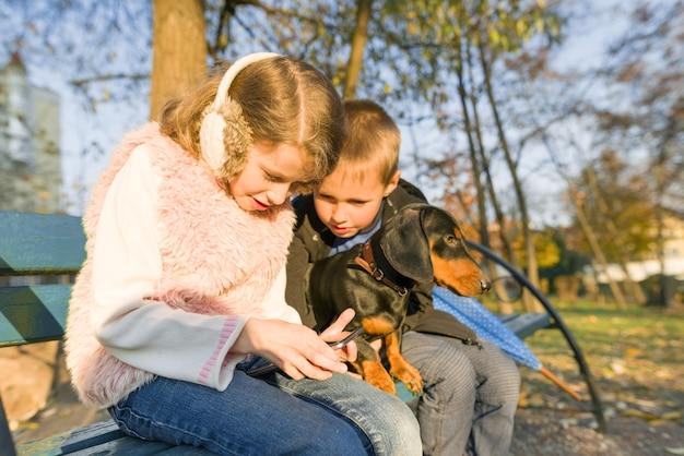 Niños sentados en un banco en el parque con un perro, miren el teléfono inteligente.