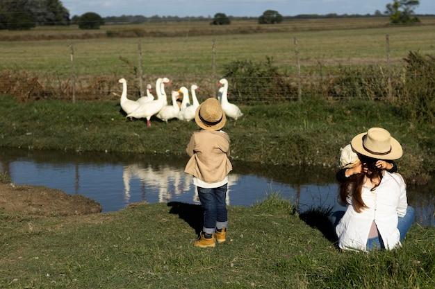 Niños de tiro completo viendo gansos
