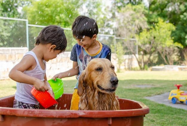Niños tomando una ducha junto con su lindo golden retriever en el jardín.