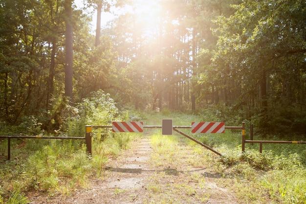 No entrar al camino cerrado al paraíso, mágico bosque ligero.