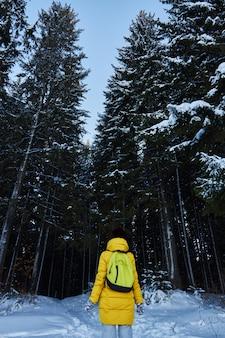Noche en un bosque oscuro, niña caminando por el bosque antes de navidad. año nuevo, cubierto de nieve
