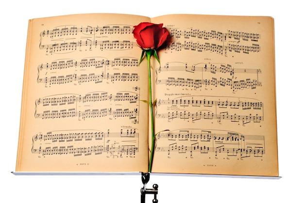 Notas musicales y rosa roja en música dest. aislado en blanco.