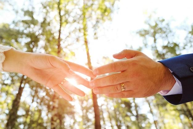 Novia y el novio de la mano en el parque.