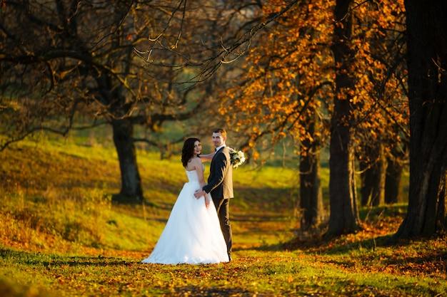 Novios en el día de su boda cerca del árbol de otoño, vista posterior