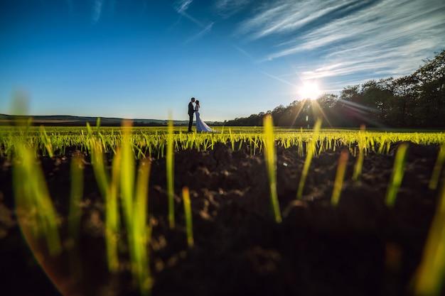 Novios posando en un campo