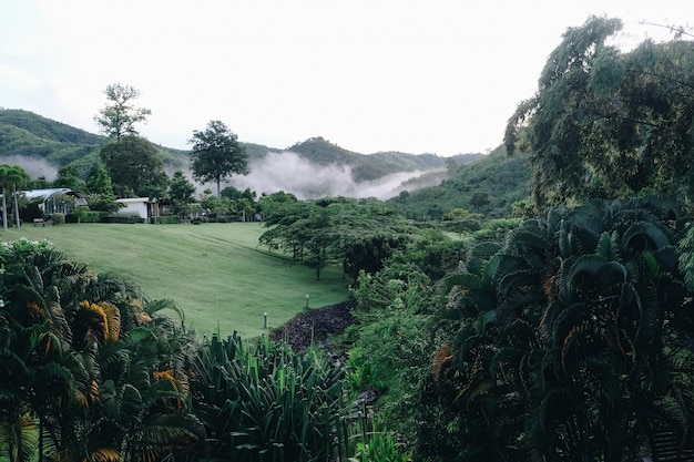 Nubes que cubren los valles hermosos suan phueng montaña en temporada de lluvias, tailandia