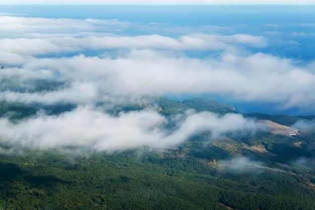 Nubes sobre un bosque de pinos, vista desde la cima de la montaña