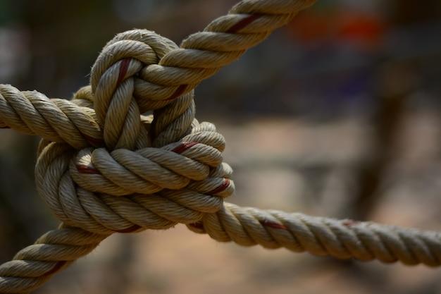 El nudo de la cuerda para aventurarse en la actividad scout.