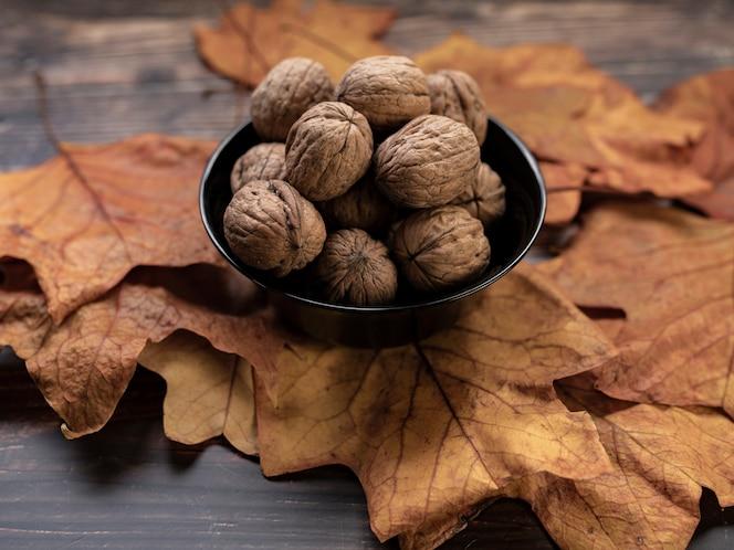 Nueces de madera de hojas secas, concepto otoñal