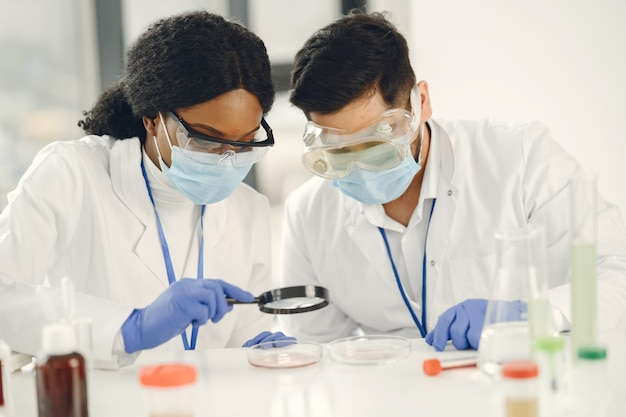 Nueva prueba. investigadores calificados concentrados vistiendo uniforme. haciendo prueba, creando vacuna.