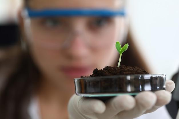 Nueva vida botánica que crece en condiciones especiales.