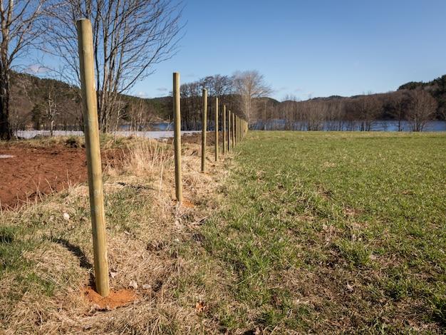 Nuevos postes de la cerca de madera en un campo. paisaje y cielo azul