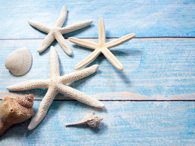 Objetos marinos, conchas y estrellas de mar sobre madera.
