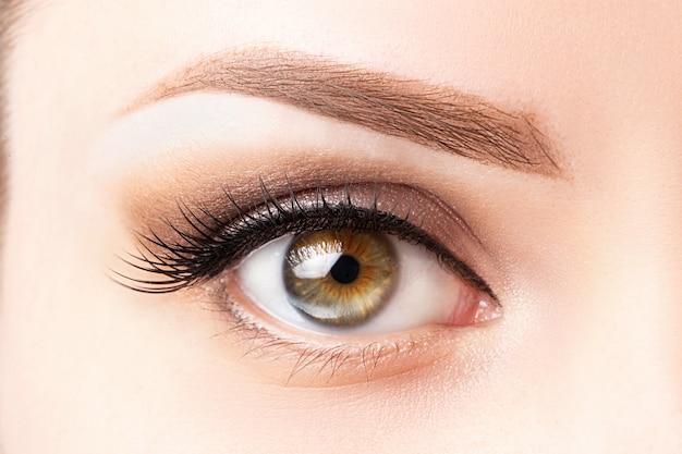 Ojo femenino con pestañas largas, hermoso maquillaje y primer plano de ceja de color marrón claro.