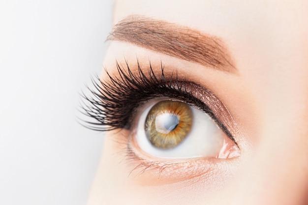 Ojo femenino con pestañas largas, maquillaje hermoso y primer plano de ceja marrón claro. extensiones de pestañas, laminación, microblading, cosmetología, concepto de oftalmología. buena visión, piel clara.