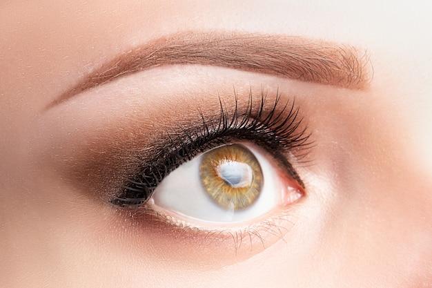 Ojo con pestañas largas, hermoso maquillaje y primer plano de ceja de color marrón claro.