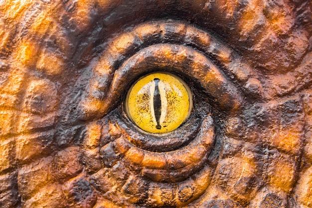 Ojos de los cazadores de dinosaurios.