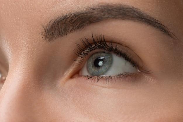 Los ojos grises de cerca en la cara de la hermosa joven caucásica