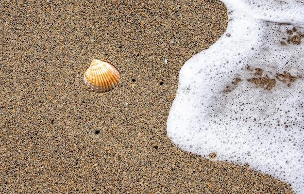Ola de mar en la playa de arena