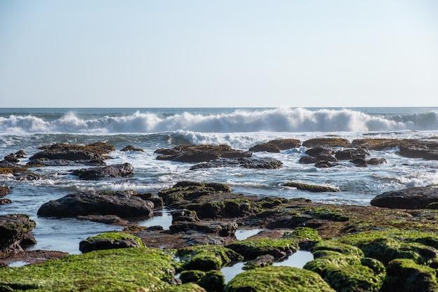 Ola rompiendo en piedra de algas
