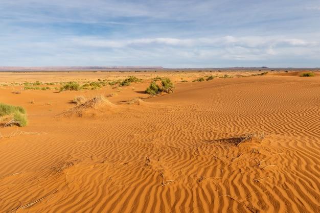 Olas de arena en el desierto del sahara, marruecos, áfrica