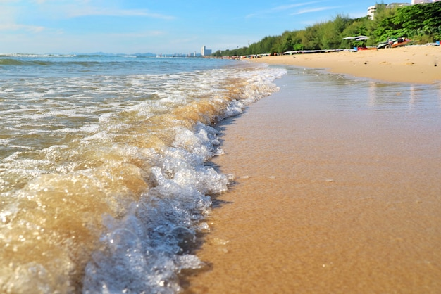 Las olas golpean en la playa con arena, pinos y cielo azul con reflejo.