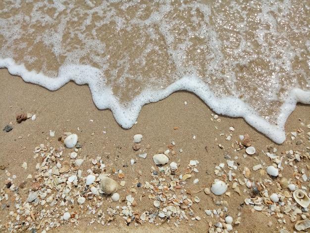 Las olas golpean en la playa con fragmentos de conchas.