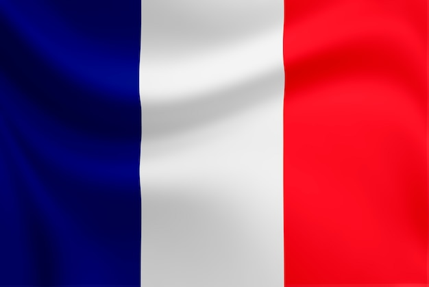 Ondeando la bandera de francia.